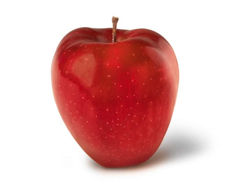 Tipos de manzana