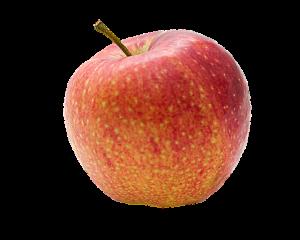 Manzana variedad Braebrunt